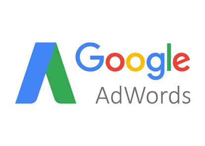 </p> <h3><strong>GOOGLE ADWORDS</strong></h3> <p>